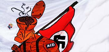 Hintergrund - AfD